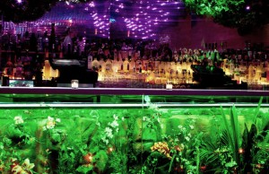 Top 4 Eco-Friendly Nightclubs
