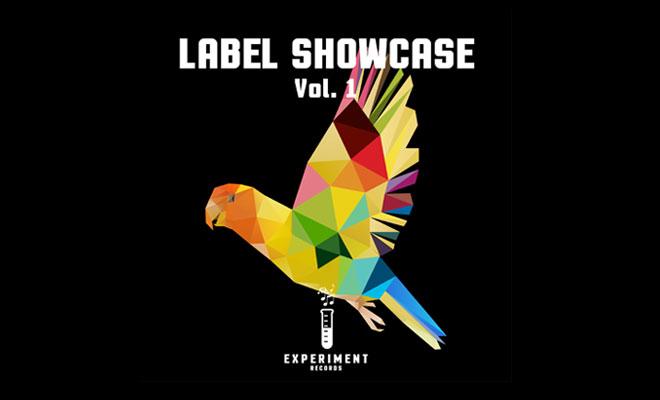 experiment records