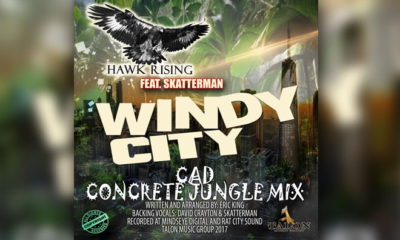 """Hawk Rising Blends EDM With Funk Music In New Song """"Windy City"""""""