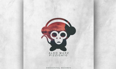 "Looking For Progressive House? Check Out Aldo Marz's ""Pizzicato"""
