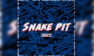 "Diemetic Continue To Amaze With New Single ""Snake Pit"""