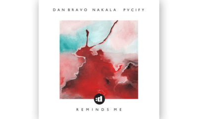 In Review: Dan Bravo, Nakala, PVCIFY - Reminds Me