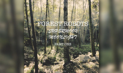 Album Review: Forest Robots - Supermoon Moonlight, Pt. One