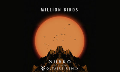 """Get Your Free Download Of Voltaire's Remix """"Million Birds"""""""