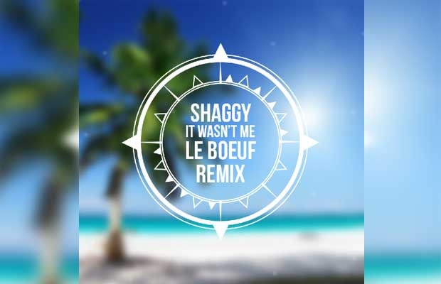 FREE DOWNLOAD: Shaggy - It Wasn't Me (Le Boeuf Remix)