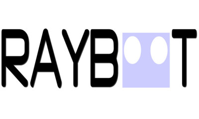 Raybot Interview 2015