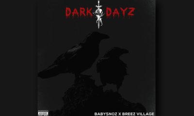 dark dayz