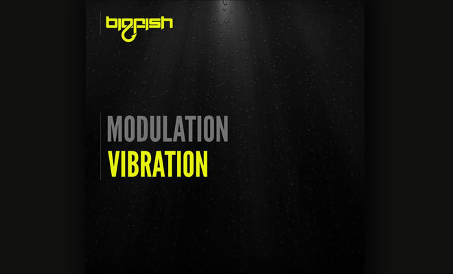Full Stream: Modulation - Vibration