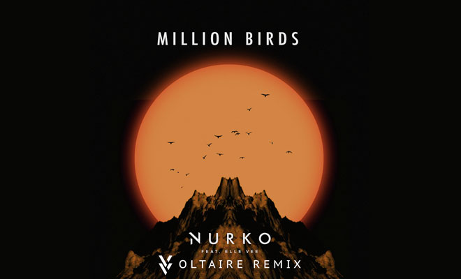 "Get Your Free Download Of Voltaire's Remix ""Million Birds"""