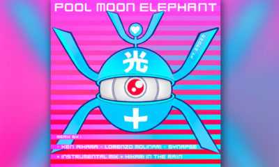 Pool Moon Elephant