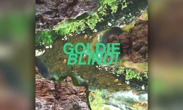 "Get Lost In Acoustic Bliss With Goldie's Lyric Video ""Tundra"""