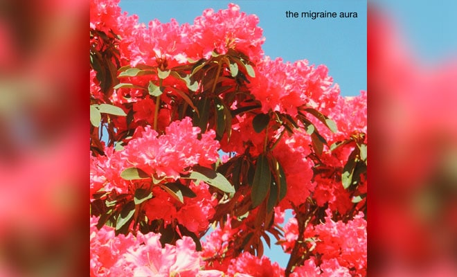 the migraine aura