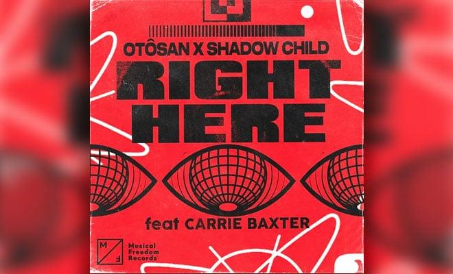 Shadow Child Otosan